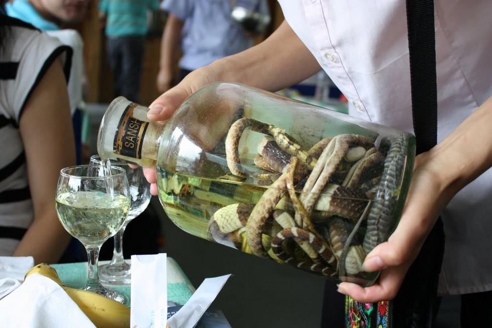 Snake_Wine03