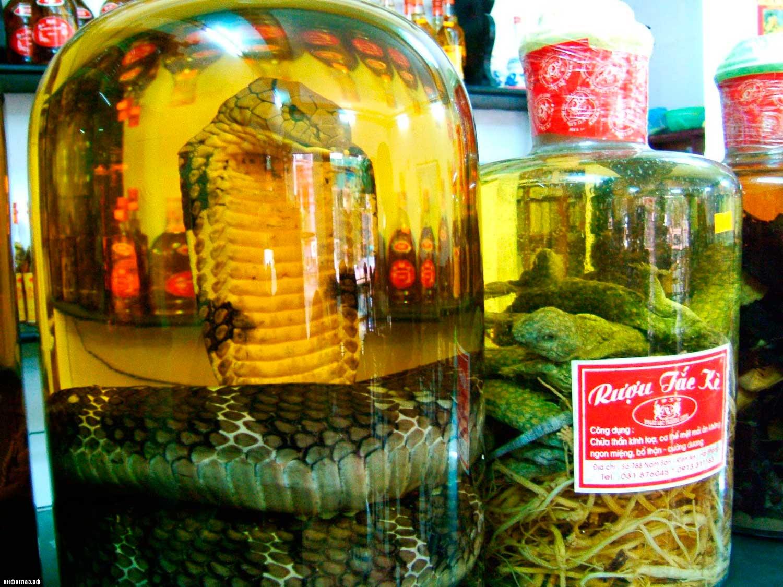 Snake_Wine10
