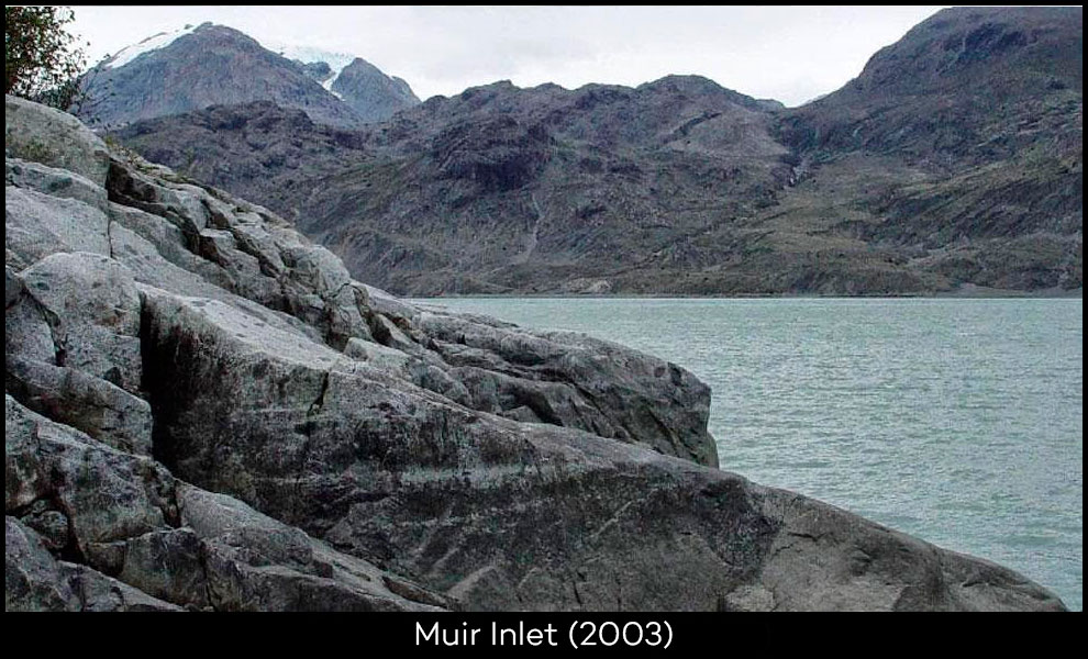 Muir-Inlet-2003