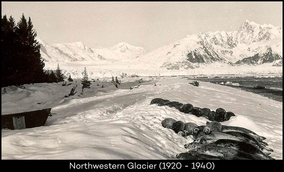 Northwestern-Glacier-1920-1940
