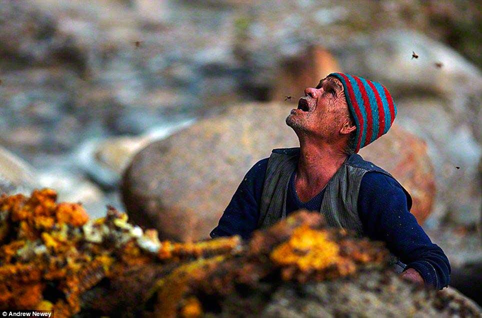 cacadores-de-mel-nepal09