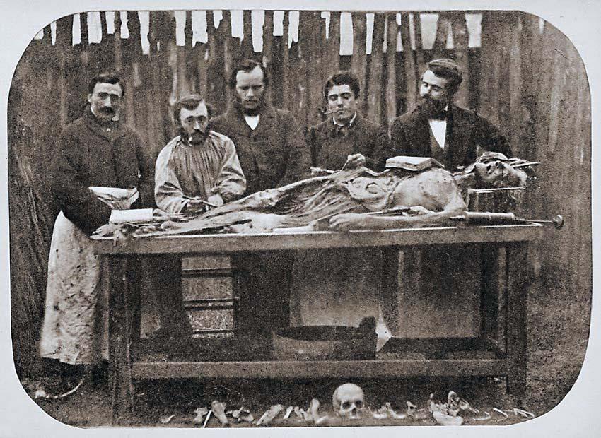 Dissecando cadáveres no passado
