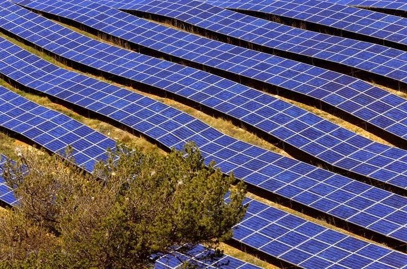 les-mees-solar-farm03