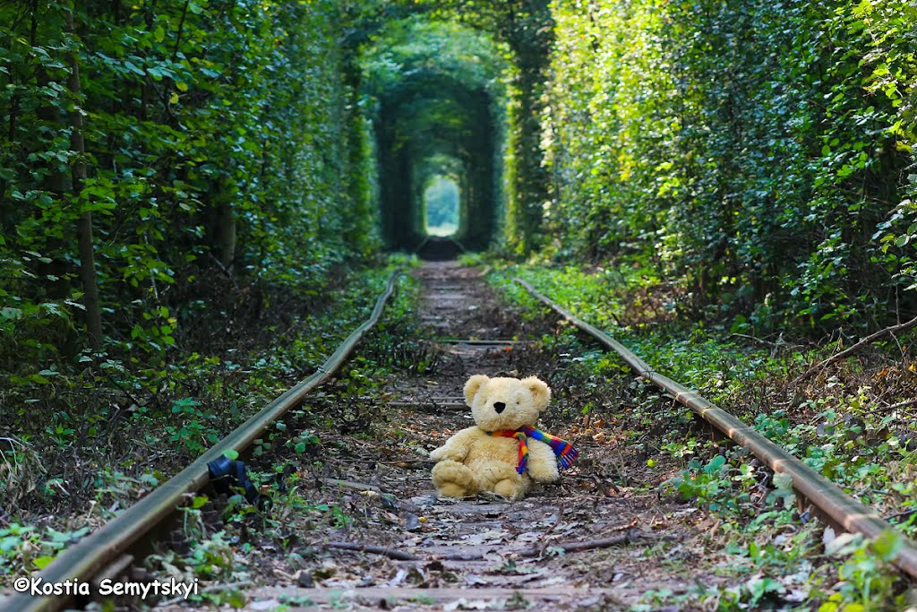 Crédito foto: http://www.panoramio.com/user/5639933