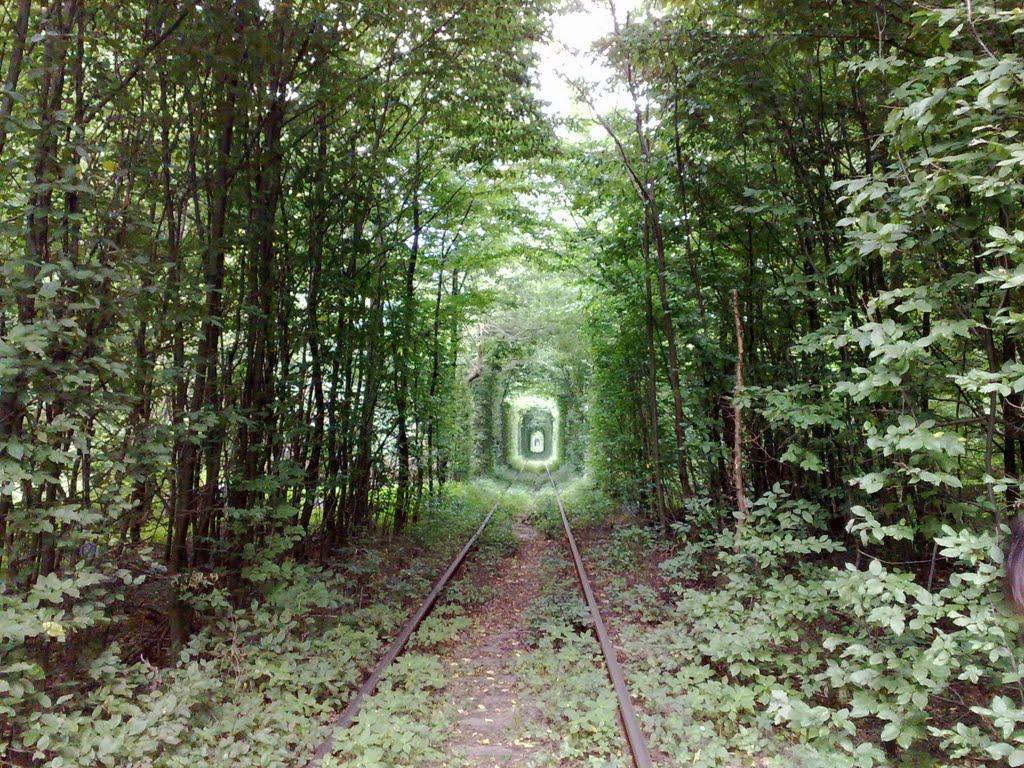 Crédito foto: http://www.panoramio.com/user/5759778