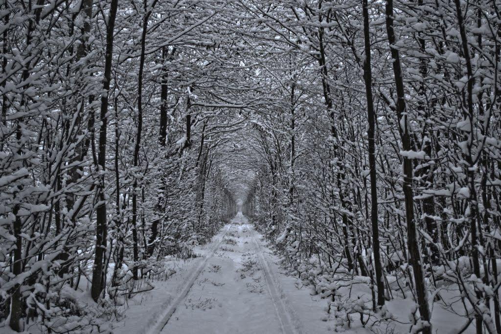 Crédito foto: http://www.panoramio.com/user/6465517