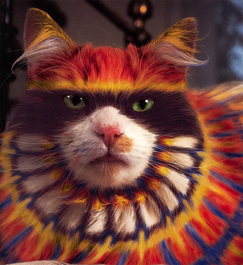 pintura-em-gatos-002