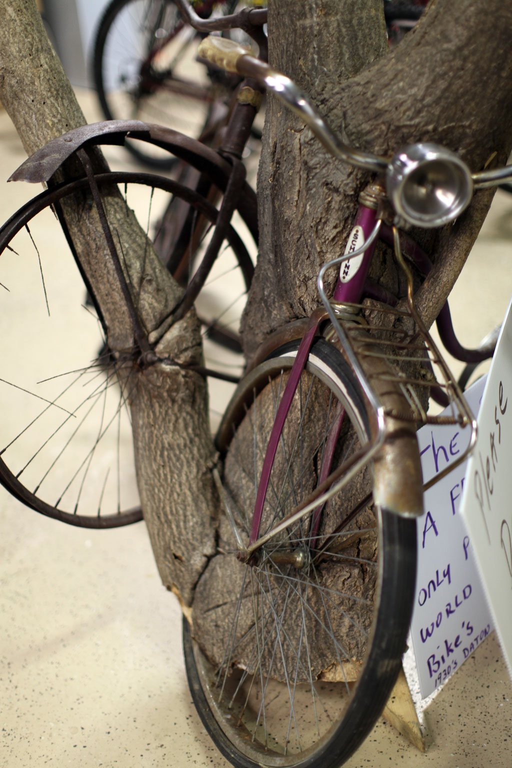 bicycle-tree-8