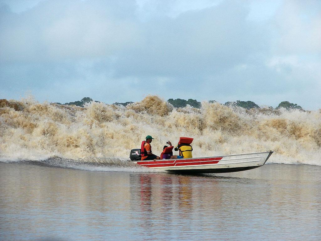 Pororoca do rio Araguari, no estado do Amapá - foto tirada em março de 2009 | Crédito da foto