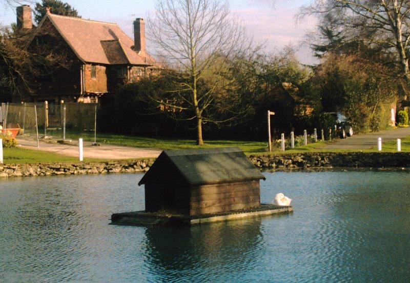 A casa de pato foi instalada na lagoa em 1960. Crédito da foto
